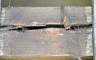 Example of deterioration of split timber decking joist